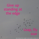 36 leap fly soar