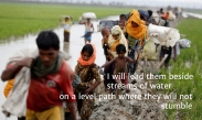 r3 Rohingya streams of water-1.jpg