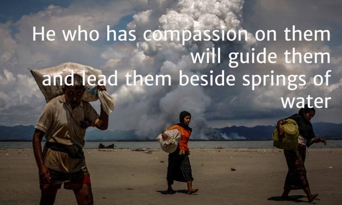 10 people in darkness rohingya