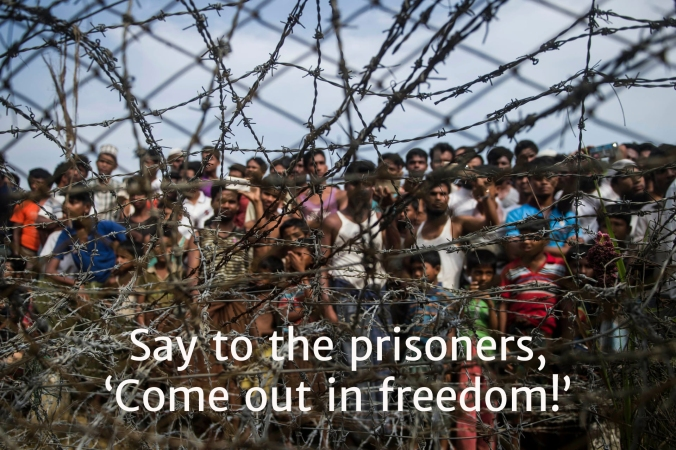 5 freedom Rohingya 9
